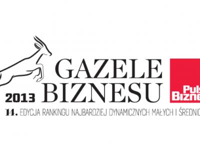 Gazele_2013